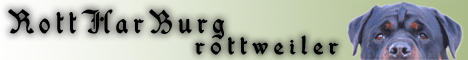 Ротвейлер - питомник RottHarBurg